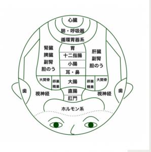 頭皮のマッサージ(銀座4)